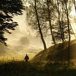 thumbnail image for The Whisper of Christ