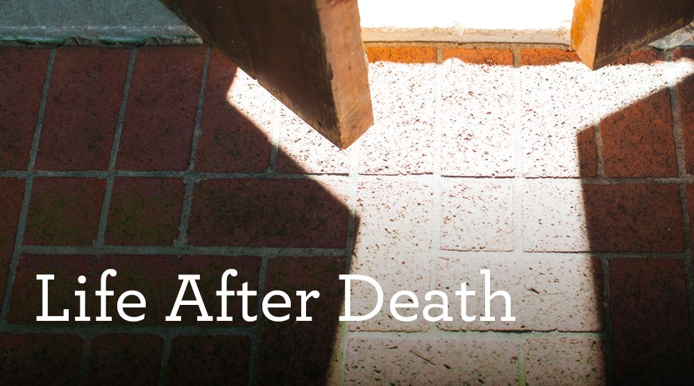 thumbnail image for Download (Free) - Life After Death