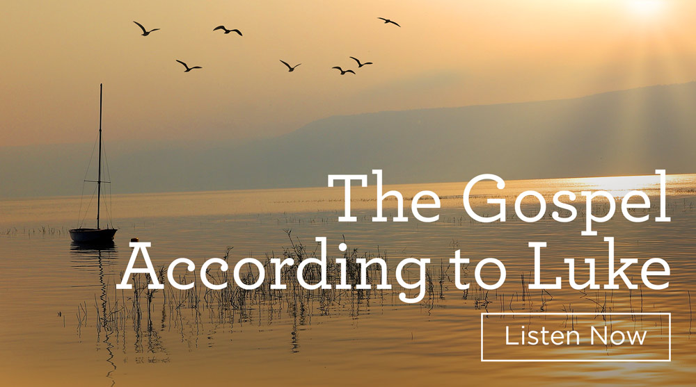 thumbnail image for Download the 11-Volume Set 'The Gospel According to Luke'