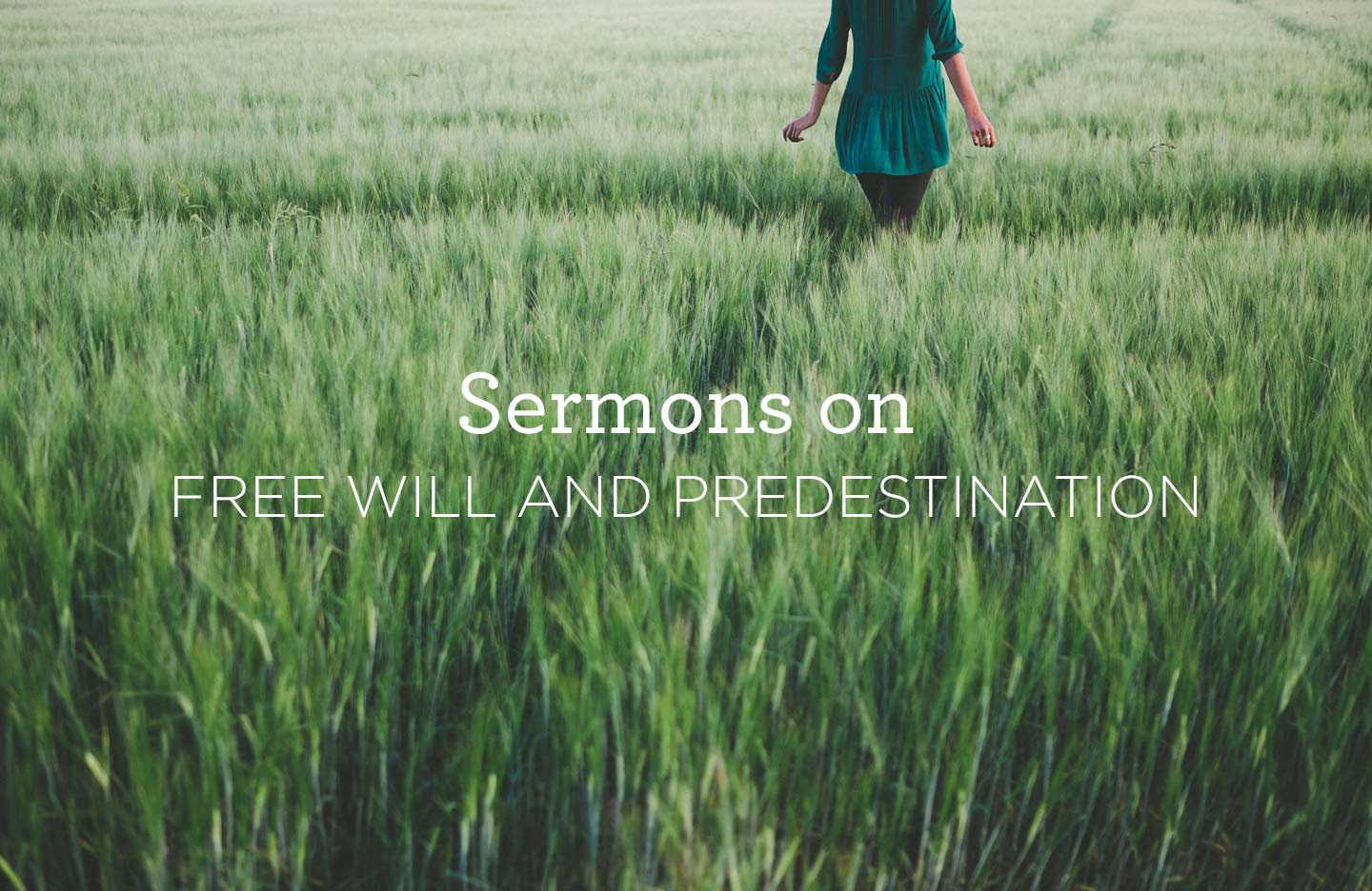 thumbnail image for Sermons on Free Will and Predestination
