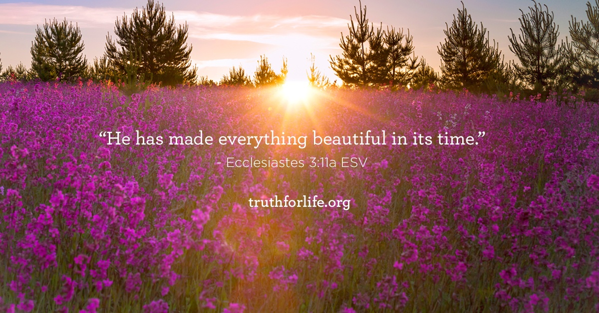 Beautiful_BlogPost