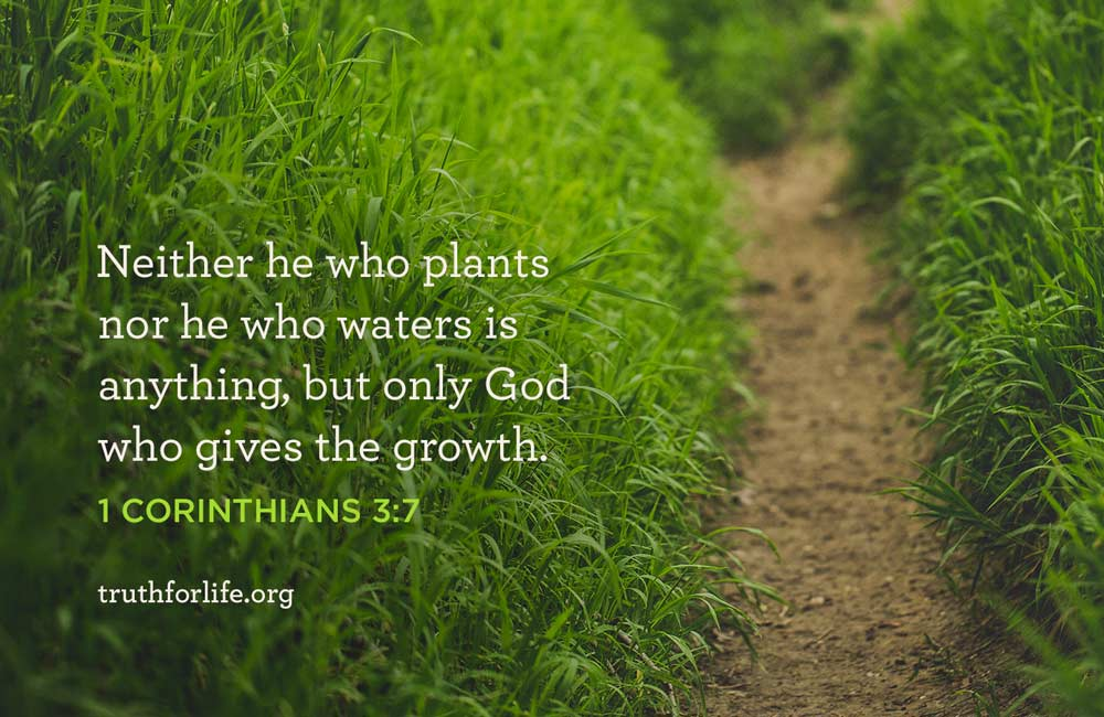 thumbnail image for God Gives the Growth: Wallpaper