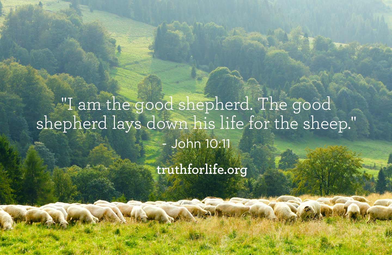 thumbnail image for Good Shepherd: Wallpaper