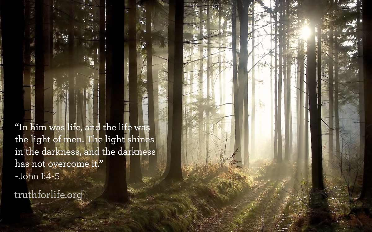 thumbnail image for Shines in the Darkness : Wallpaper