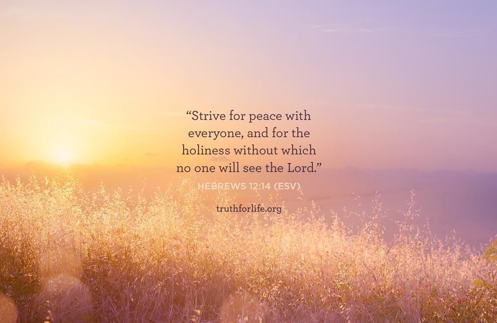 thumbnail image for Strive for Peace: Wallpaper