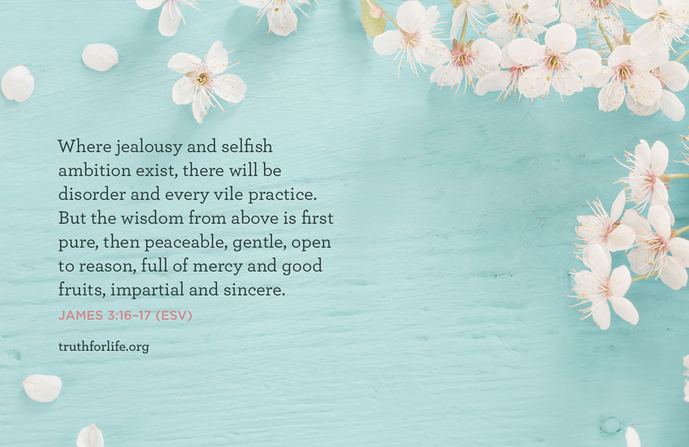 thumbnail image for Wisdom from Above: Wallpaper